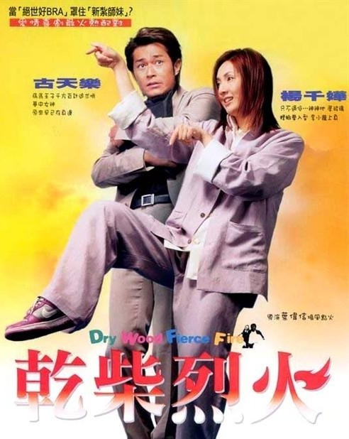 Dry Wood, Fierce Fire Movie Poster, 2002, Actor: Louis Koo, Hong Kong Film
