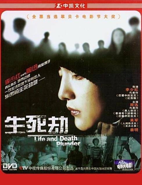 Stolen Life Movie Poster, 2005, Zhou Xun