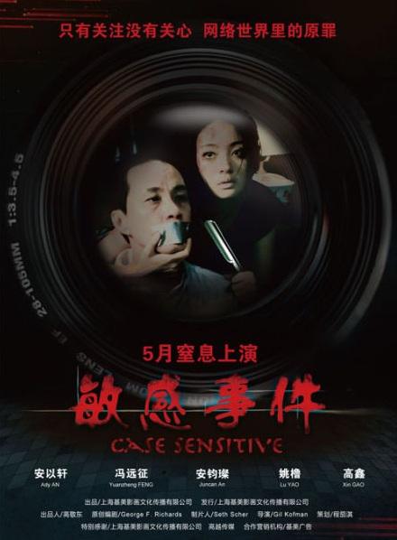 Case Sensitive Movie Poster, 2011