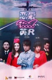 Love at 30000 Feet Movie Poster, 2012